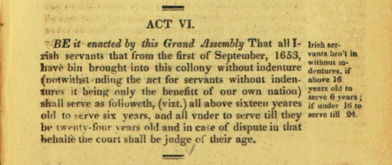 Virginia Statute, Irish Indentured Servants